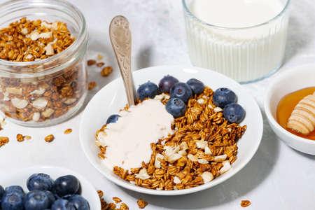 homemade coconut granola with blueberries and yogurt, closeup