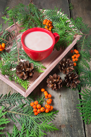 pinecones: Christmas composition with hot chocolate, cookie, trees and pinecones