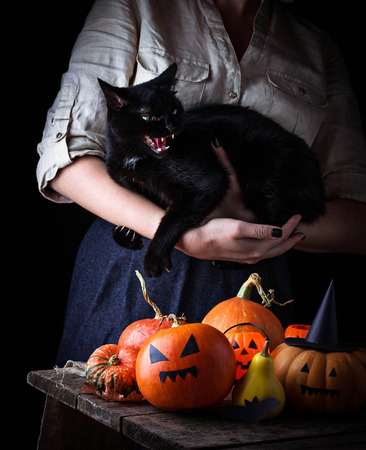 angry vegetable: Halloween pumpkin and woman with furious black cat. Selective focus Stock Photo
