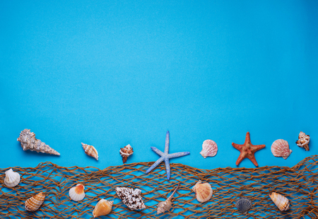 Different seashells and fishnet on blue background. Top view