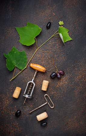 Grape and vintage corkscrew