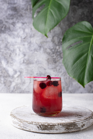 Summer cocktail with blackberry, mint  and ice cube