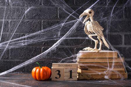 Halloween background with bird skeleton