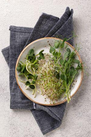 Fresh variety micro greens sprouts on light background Reklamní fotografie