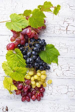 Assortment of different sort of grapes 写真素材