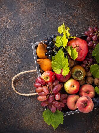 Various autumn fruits. Harvest concept 写真素材