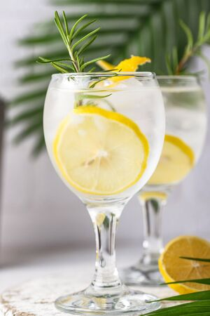 Gin tonic cocktail with ice and lemon