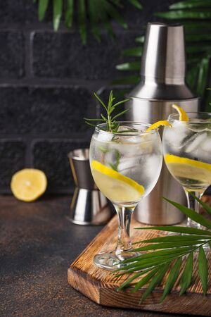 Gin tonic cocktail with lemon 스톡 콘텐츠 - 137393567