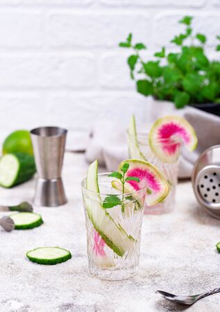 Cocktail with cucumber and radish