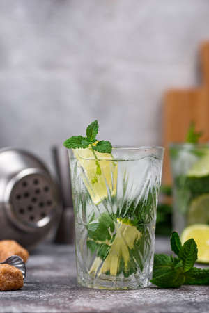 Summer cocktail with lime and mint. Gin tonic, gimlet or Mojito