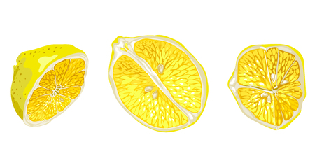 Set with parts of lemon fruit in different forms and shapes. There are lemon slices and halves