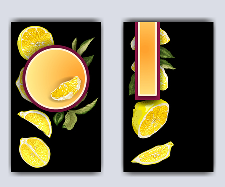 Banner template with citrus branches and slices and lemon fruit halves. Bright graphic drawings on black background with frames of different shapes