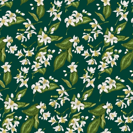 Seamless pattern with citrus tree branches made in green and white colors in a style of Spanish wedding decor. Beautiful flowers with buds in a vector illustration