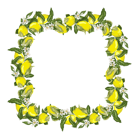 Vector illustration template square frame wreath with citrus fruit tree branch with lemon fruits, flowers and leaves in bright colors Stock Illustratie