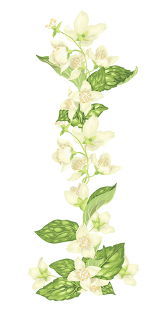 Vertical decor elements with jasmine flowers bloom branches in realistic graphic vector illustration in bright colors