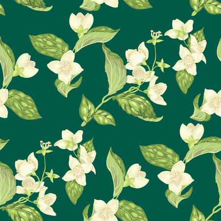 Seamless pattern with jasmine flowers in realistic graphic vector illustration on marine green background