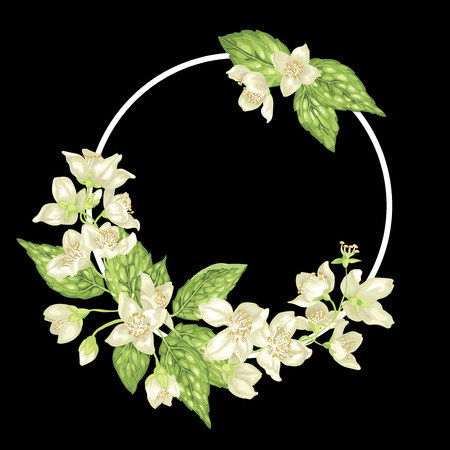 Decor ring element with branches of jasmine with flowers and leaves in realistic vector graphic illustration Ilustração Vetorial