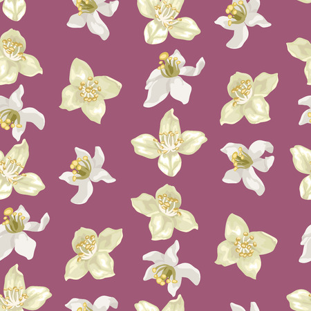 Citrus and jasmine flowers in vector illustration in seamless pattern in realistic style