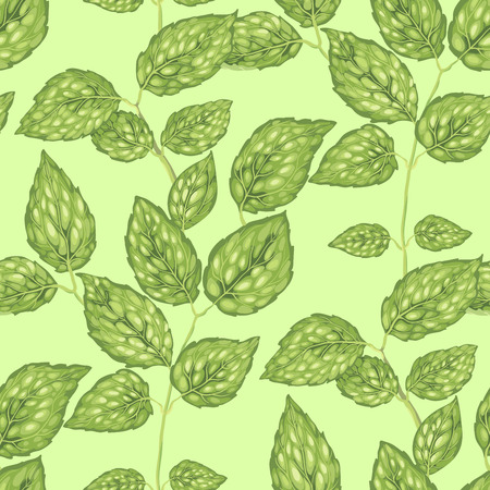 Seamless pattern with jasmine bush leaves in realistic vector graphic illustration