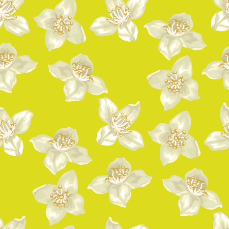 Seamless pattern in vector illustation with jasmine flowers in realistic style for textile and print design