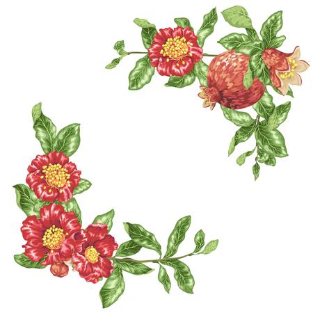 Modello in illustrazione vettoriale con fiori di melograno in elementi decorativi ad angolo Vettoriali