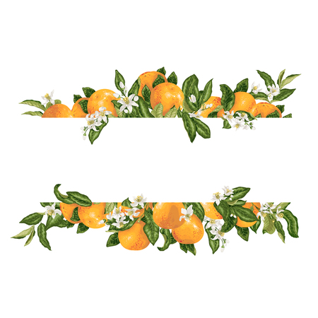 Template frame decprative vector element with citrus flowers and fruits graphic design illustration