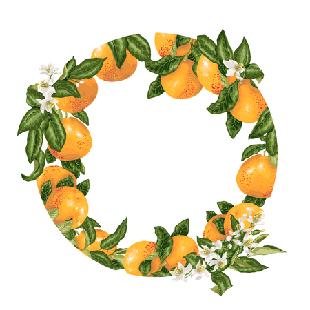 Template decorative vector element with citrus fruits in circle design graphic illustration
