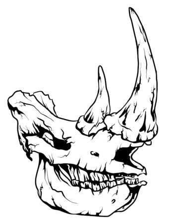 Vector graphic coloring page with rhinoceros skull