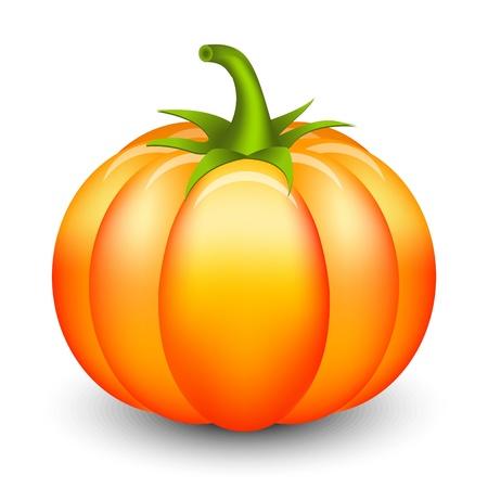 zucche halloween: Illustrazione vettoriale di zucca
