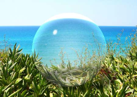 View through the glass ball photo