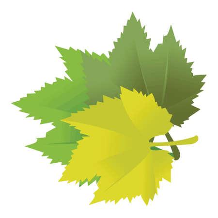 illustration of leaves Stock Vector - 12670642
