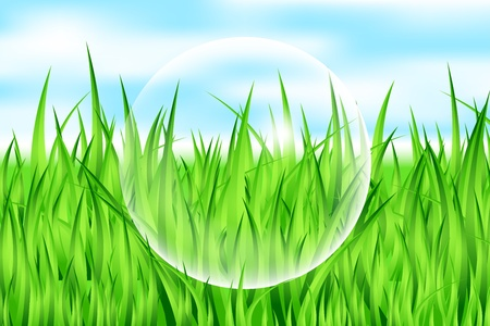 clean air: Vector illustration of drop on grass