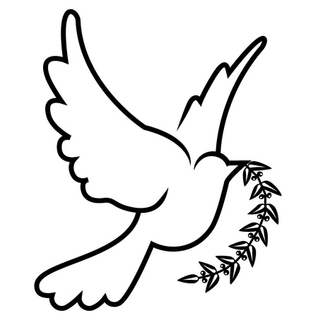 white dove: vector symbol of dove olive branch Illustration