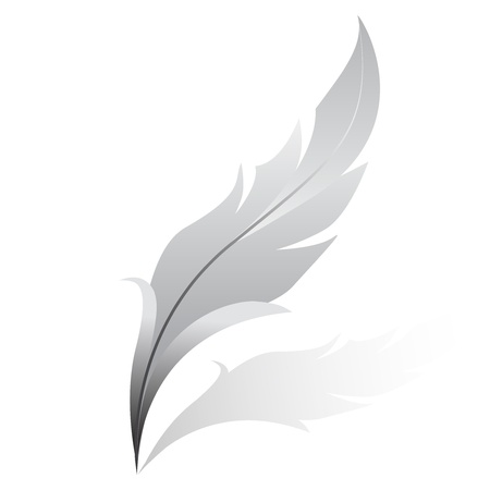 feather pen: Vector illustration of silver feather Illustration