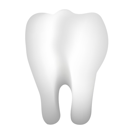 3d illustration of tooth Stock Vector - 14646044