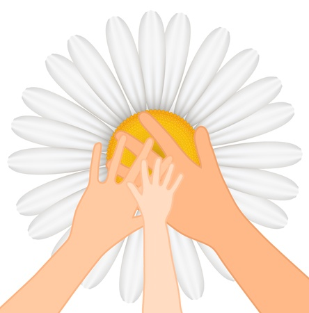 Family illustration of hands on chamomile background Vector