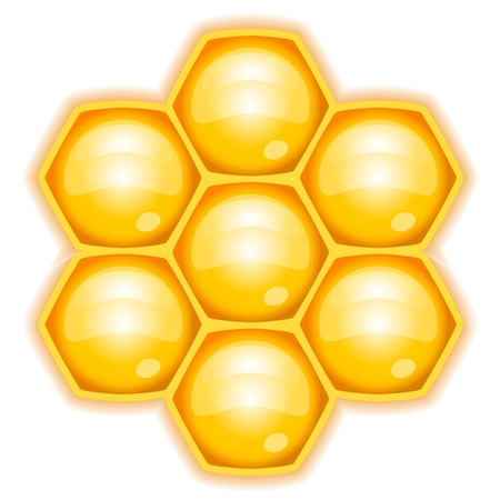 illustration of honeycomb