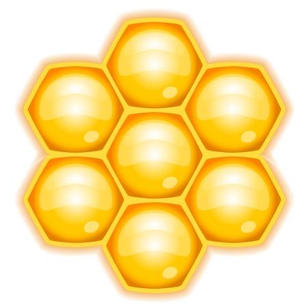 hive: ilustraci�n de panal Vectores