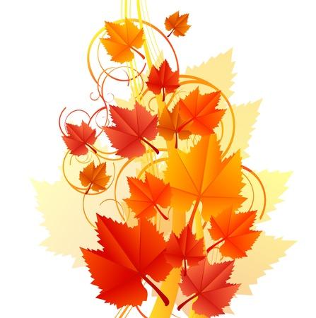 Vector illustration of orange leaves Stock Vector - 14646103