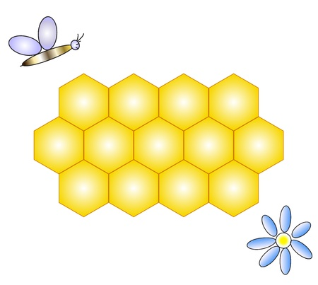 apiculture: Vector illustration of honeycomb, bee   flower