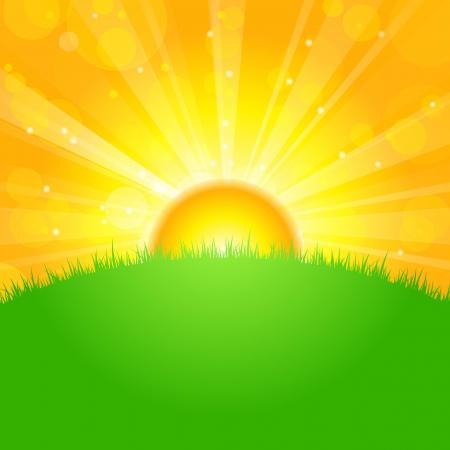 Vector illustratie zonsopgang over veld