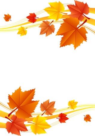 autumn leaf frame: Vector autumn frame