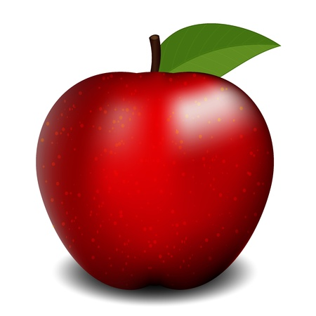 Vector illustration of red apple Vector
