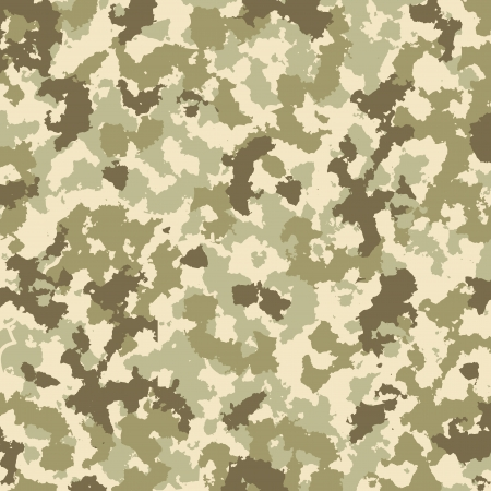 camouflage pattern Stock Vector - 18225590