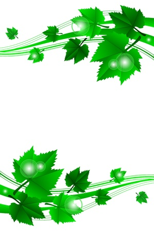 Vector green frame with leaves Vector