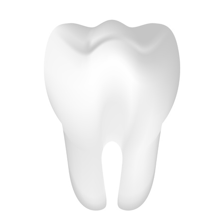 fluoride: Vector illustration of tooth Illustration