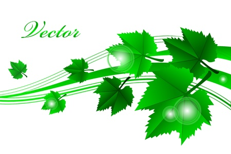 green frame with leaves Vector