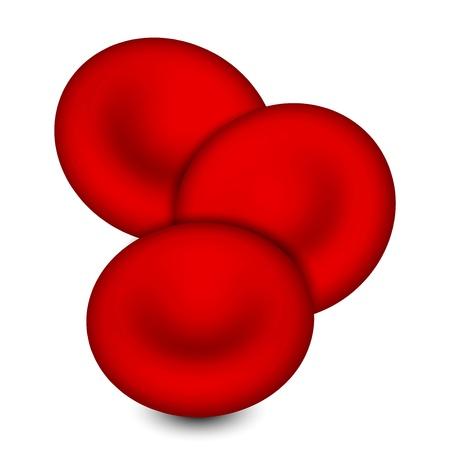 globulo rojo: ilustración de glóbulos
