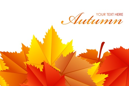 Vector illustration of fall leaves Vector
