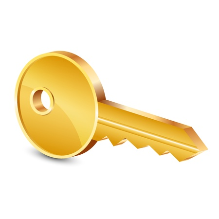log in: Vector illustration of gold key